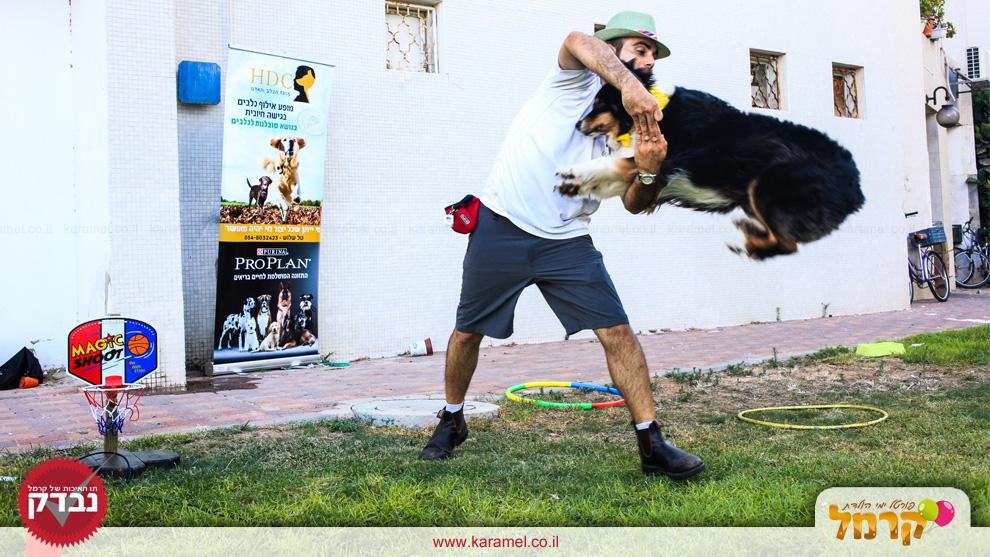 מופע אילוף כלבים באהבה - 073-7597087
